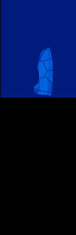 Sr hand cover inside %28voronoi%29   dark blue